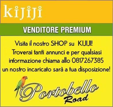 Kijiji Shop Portobello Road