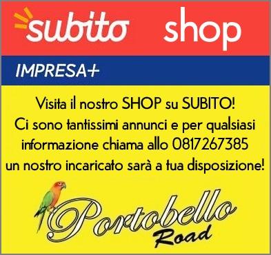 Subito Shop Portobello Road