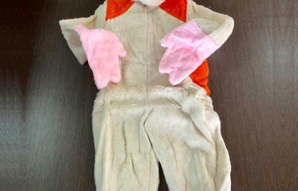 Costume da Hamtaro TG 2