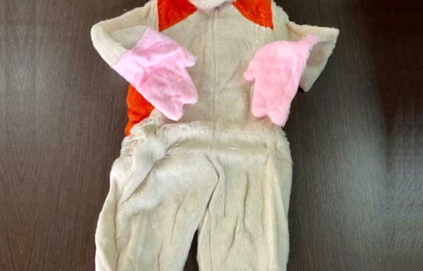 Costume da Hamtaro TG 3
